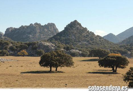 Otoño en Grazalema | SENDERISMO EN MALAGA y otros lugares de Andalucia | Scoop.it
