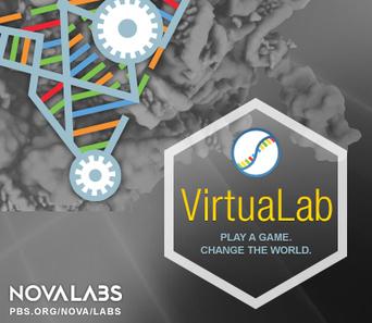RNA Lab | NOVA Labs | PBS | STEMid | Scoop.it