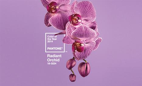 Découvrez le nouveau Pantone 2014 et un retour sur l'année 2013 | Blog du Webdesign | Les tendances du web | Scoop.it