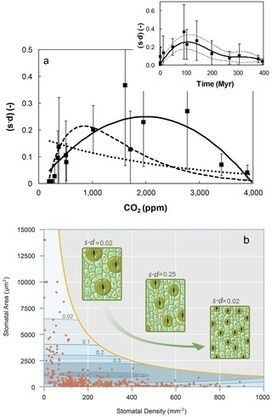 PLOS ONE: Plant Water Use Efficiency over Geological Time – Evolution of Leaf Stomata Configurations Affecting Plant Gas Exchange | Plant Gene Seeker -PGS | Scoop.it