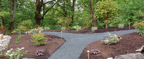 Advance Landscape Management – A Seattle Landscaping Company | Safety Glasses | Scoop.it
