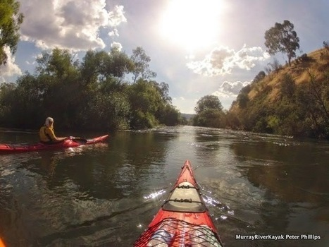 Murray River Kayak.: Goulburn River Paddle Day 1. Eildon - Molesworth. | VCE Geography | Scoop.it