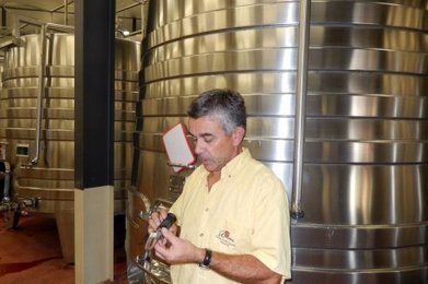 Viticulture : une année qui s'annonce difficile - Sud Ouest | Agriculture en Gironde | Scoop.it