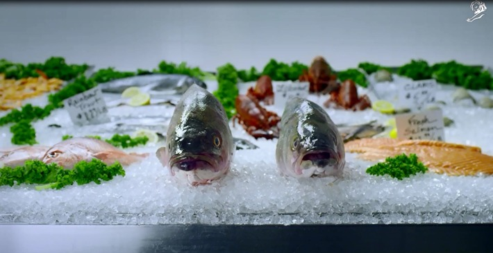 Like 3-Day Old Fish, AZ's Take it From a Fish Campaign Had Bad Taste | Pharmaguy's Insights Into Drug Industry News | Scoop.it