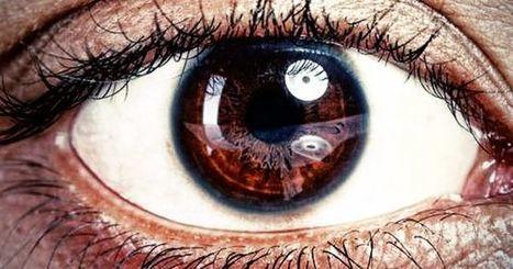 Scientists Are Using Algae DNA To Restore Sight To The Blind | Chair et Métal - L'Humanité augmentée | Scoop.it