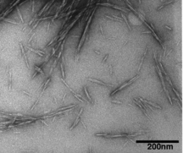 Cellulose nanocrystals possible 'green' wonder material | Perma-Tech Inspirations | Scoop.it