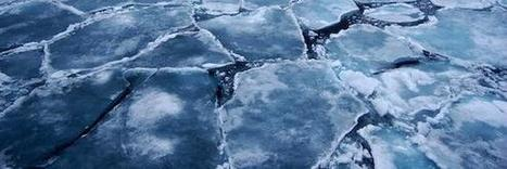 Poles apart: Arctic sea ice has shrunk but Antarctic sea ice has grown | Sustain Our Earth | Scoop.it