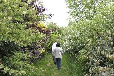 Carnets de jardins : neuf nouveautés | Actualités du Limousin pour le réseau des Offices de Tourisme | Scoop.it