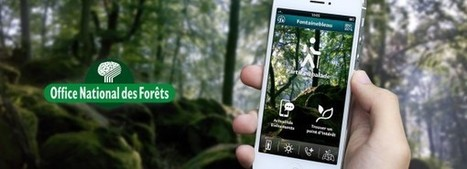 Forêt de Fontainebleau : une application pour les malvoyants développée en Bourgogne | Numérique en Bourgogne | Clic France | Scoop.it