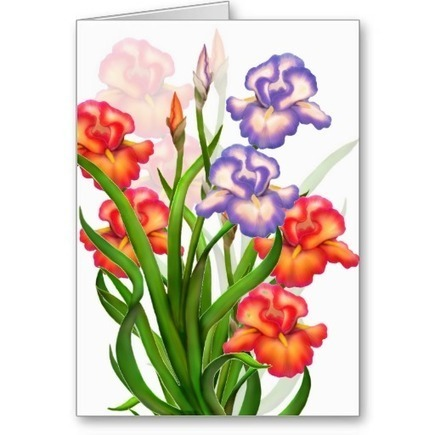 Elegant Iris Flowers Card from Zazzle.com   Artistic Greeting Cards   Scoop.it