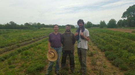 %22Terre de Liens%22 fait pousser des terres en Poitou | S'installer en milieu rural | Scoop.it