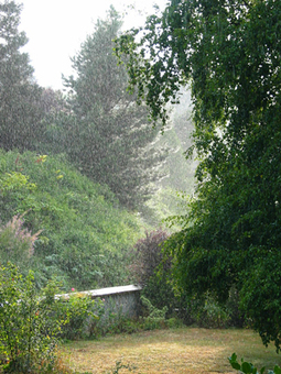 Meditating in the Rain | Unplug | Scoop.it