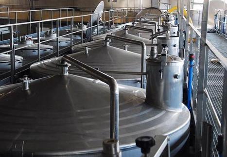 El increíble proceso químico que transforma el mosto en vino | fermentacion del vino | Scoop.it