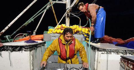 Pêche en eau profonde : la France accusée d'avoir menti - Le Monde   Actualités   Scoop.it