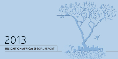 Insight On Africa: Special Report | Development economics | Scoop.it
