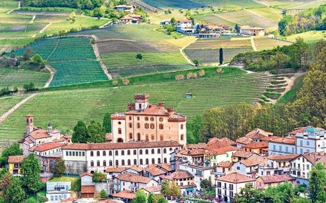 Enjoy Italy's quiet wine stars - Telegraph | On the Plate | Scoop.it
