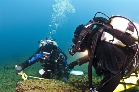 Lake Huron find raises hopes in search for signs of ancient human activity | All about water, the oceans, environmental issues | Scoop.it