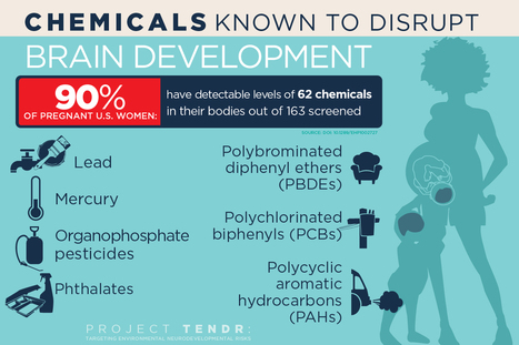 A host of common chemicals endanger child brain development, NIH journal reports | KurzweilAI | Longevity science | Scoop.it