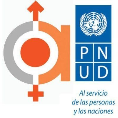 UNDP | Procurement Notices - 29340 - 4938 RSC 2016 - PRE APPROVED ROS | Genera Igualdad | Scoop.it