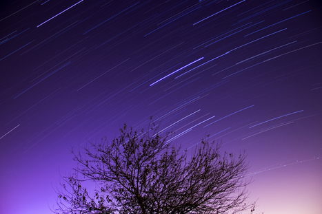 first attemt at star trails - Canon Digital Photography Forums | Cert III digital media | Scoop.it