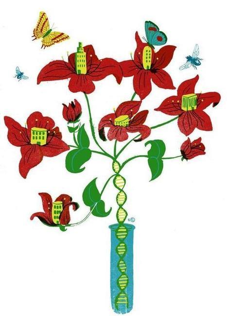 Boston's blooming biotech ecosystem - The Boston Globe | Australian Higher Education | Scoop.it