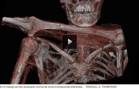 Las arterias de nuestros ancestros también estaban obstruidas   Apasionadas por la salud y lo natural   Scoop.it