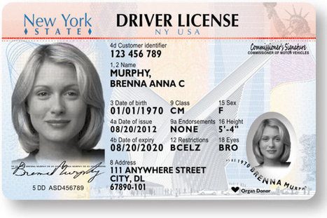 New York State Will Fight Fake Licenses With New Tactics | Radio Show Contents | Scoop.it