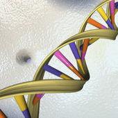 Les tests ADN élargissent leurs débouchés   Vous avez dit Innovation ?   Scoop.it