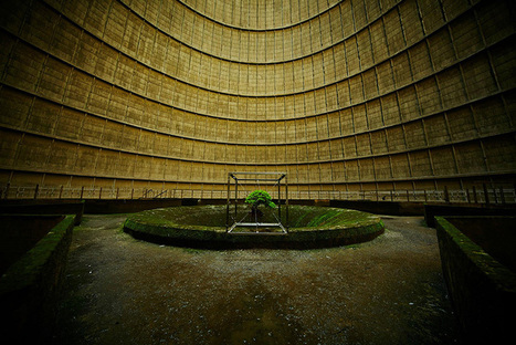 The Hand of Man: Bonsai Hangs Inside Abandoned Power Plant | Modern Ruins | Scoop.it