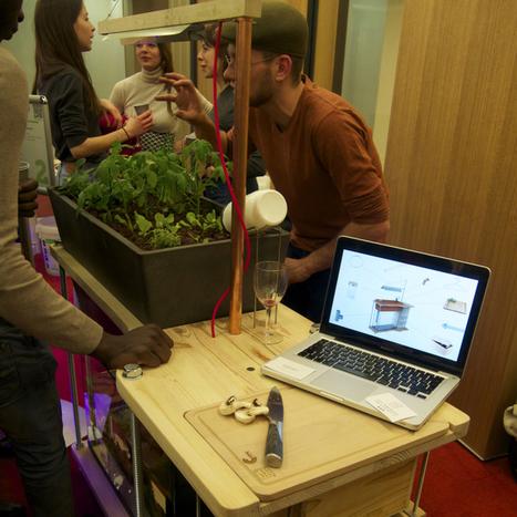 Agriculture urbaine : Cultures végétales DiY pour paysages urbains | URBANmedias | Scoop.it