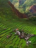 Batad Rice Terraces in Ifugao Province, Philippines - Free Pictures of Various Places   Igorotdo   Scoop.it