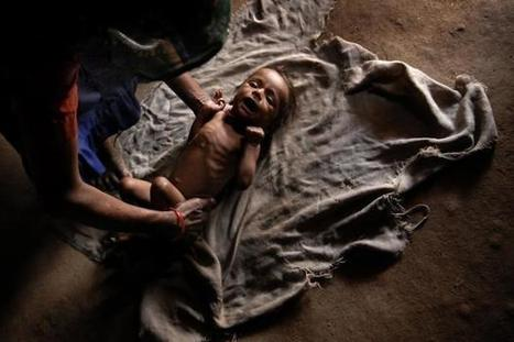 About 48% of children in India are stunted: UNICEF | Food Security and Nutrition in Asia | Scoop.it