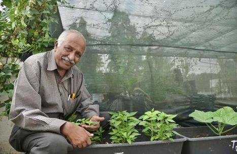 Live, let live | Organic Farming | Scoop.it