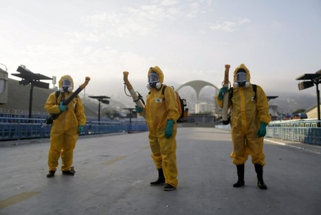 Here's why the WHO responded so differently to Zika and Ebola | Funding, Careers and Communication in Science Research | Scoop.it