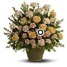 Rose Remembrance Toronto by Andrea Eason | Flower Shop Toronto | Scoop.it