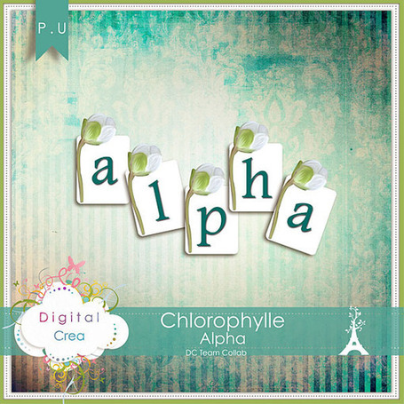 Chorophylle -kit completo free digital scrapbooking | MOnica e lo scrapbooking | Scoop.it