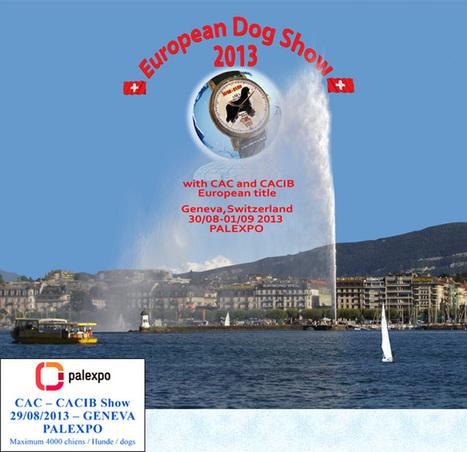 European Dog Show 2013 / Geneva, Switzerland | Cinófilia | Scoop.it