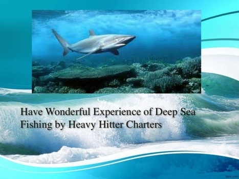 Have wonderful experience of Deep Sea Fishing by Heavy Hitter Charters | Heavy Hitter Charters | Scoop.it