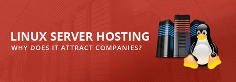 Linux Server Hosting: Why Does It Attract Companies? | Web Hosting | Scoop.it