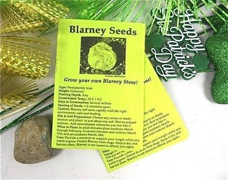 Blarney Stone Seeds, St. Patrick's Day Fun, Grow Your Own Blarney Stone Garden | Annie Haven | Haven Brand | Scoop.it