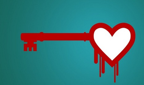 Heartbleed: 95% of detection tools 'flawed', Claim Researchers | Technology in Business Today | Scoop.it
