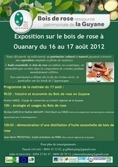 Une exposition itinérante sur le bois de Rose ! | Just Do It Yourself | Scoop.it