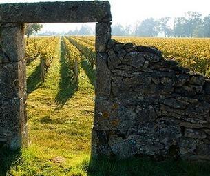Sauternes-Barsac : Olivier Castéja devient président des Grands Crus Classés   Le vin quotidien   Scoop.it