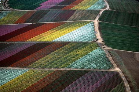 Exploring farms from above | Geography Education | Scoop.it
