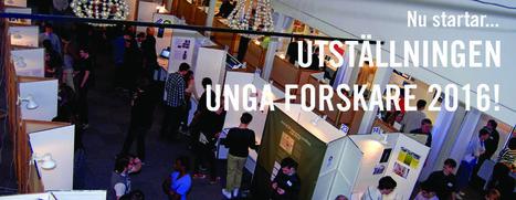 Förbundet | Unga Forskares hemsida | Gymnasiearbete | Scoop.it