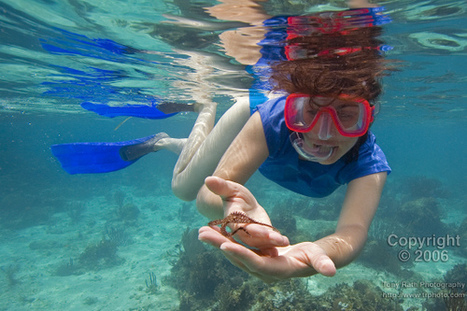 First Time Snorkeler! - Caye Caulker, Belize | Belize in Social Media | Scoop.it