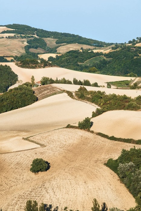 Italian Summers by Lisa | Somewhere for the weekend: Le Marche | Italy Traveller | Scoop.it