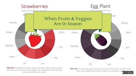 When are fruits & veggies in season? [infographic] | Holistic Nutrition Health and Wellness | Scoop.it