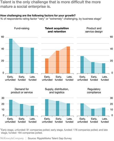 How social entrepreneurs can solve the talent problem | McKinsey & Company | Organisation Development | Scoop.it