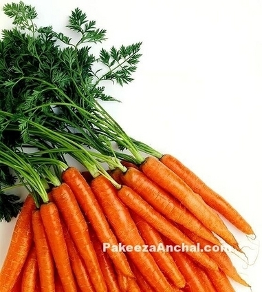 Health Benefits and Uses of Carrot Juice & Vegetable | Indian Fashion Updates | Scoop.it